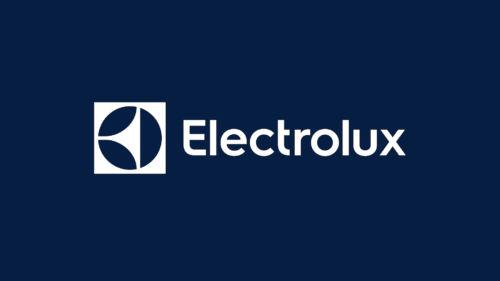Estudi 2: Marco Zanni per Electrolux.